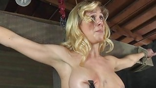 Lusty and wild strumpets are stuffed inside a cage
