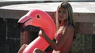 Pink swan